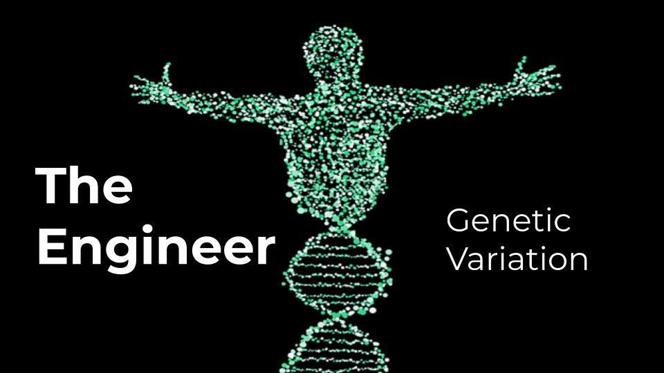 Genetic variation engineer